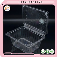quality plastic clamshell blister tray, wholesale fruit storage box, hinged lid plastic container