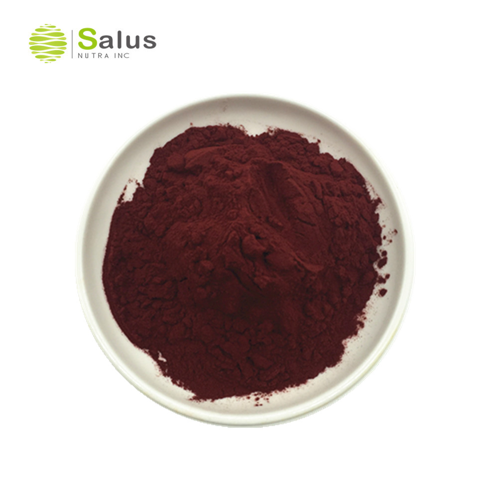 High Quality Red Wine Extract Powder Polyphenol