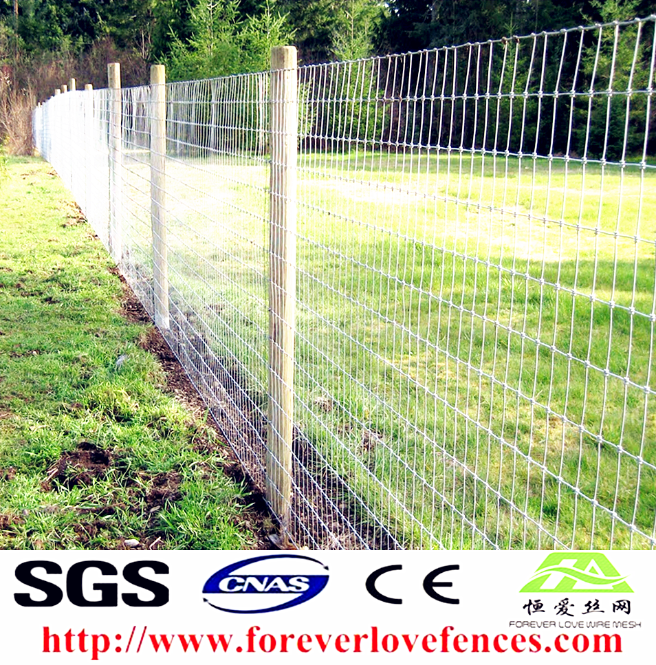 Electric Goat Fencing, Electric Goat Fencing Suppliers and ...