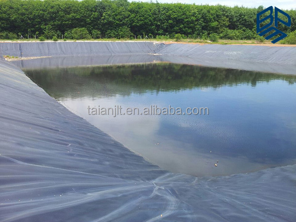 Fish pond plastic liner malaysia geomembrane hdpe for Fish plastic pond