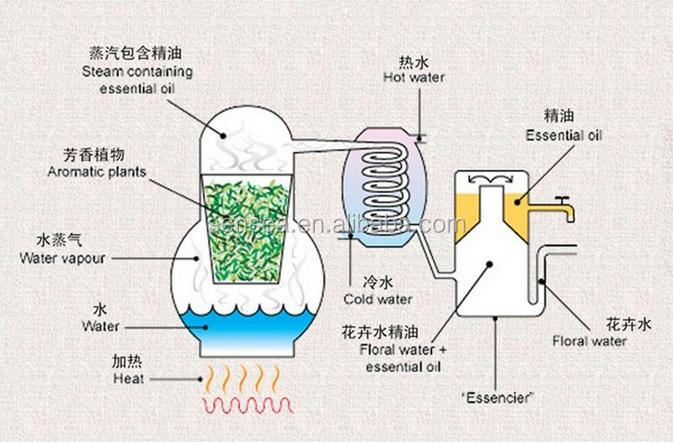 China Menthol Crystal,Natural Aroma Chemicals