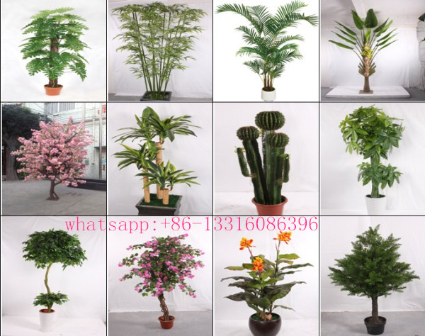 q082612 different types of plants and trees artificial