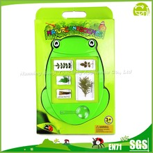 Real Leaves Set Embedded Specimen Educational Blocks Toys for Preschool