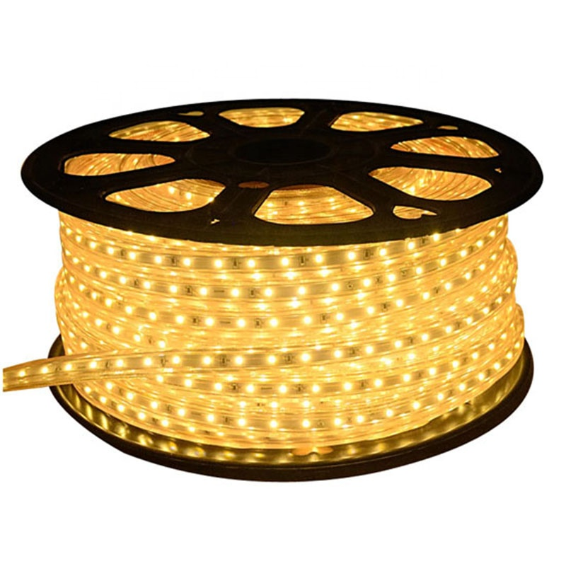 Factory price 5050 RGB 100 m/roll strip led light