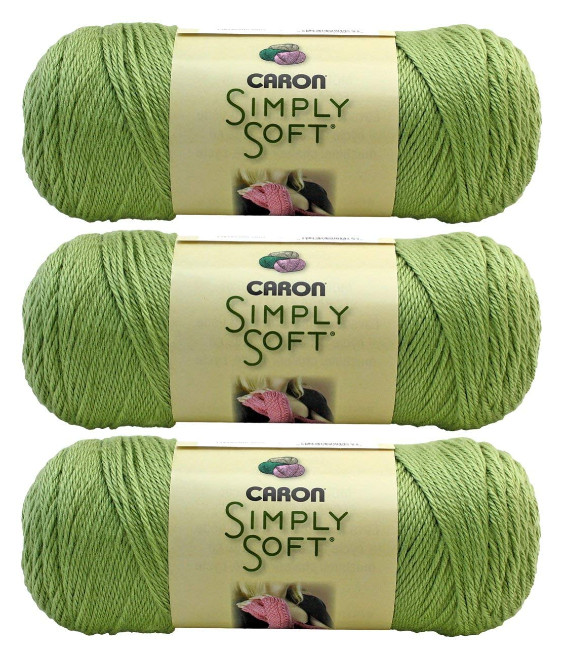 Bulk Buy: Caron Simply Soft Collection Yarn (3-Pack) Pistachio H97COL-3