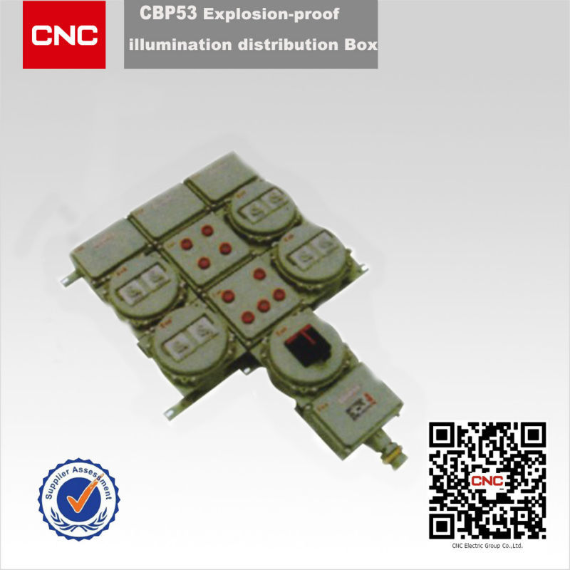 China Top 500 enterises CBP53 explosion proof 20 pairs distribution box
