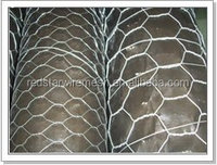 Electro galvanized pvc tree guard hexagonal woven wire mesh