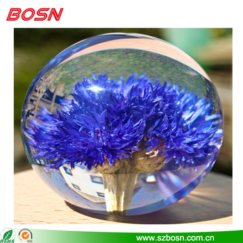 Beautiful and clear cornflower paperweight for sale