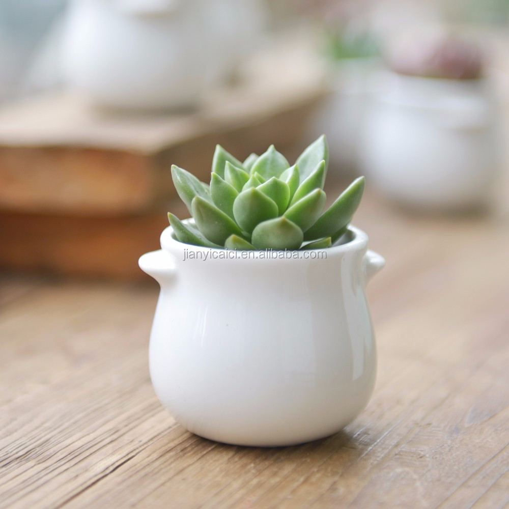 Unique creative decoration white ceramic indoor planters