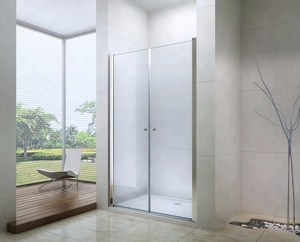 EX-218 two glass high quality double pivot shower door