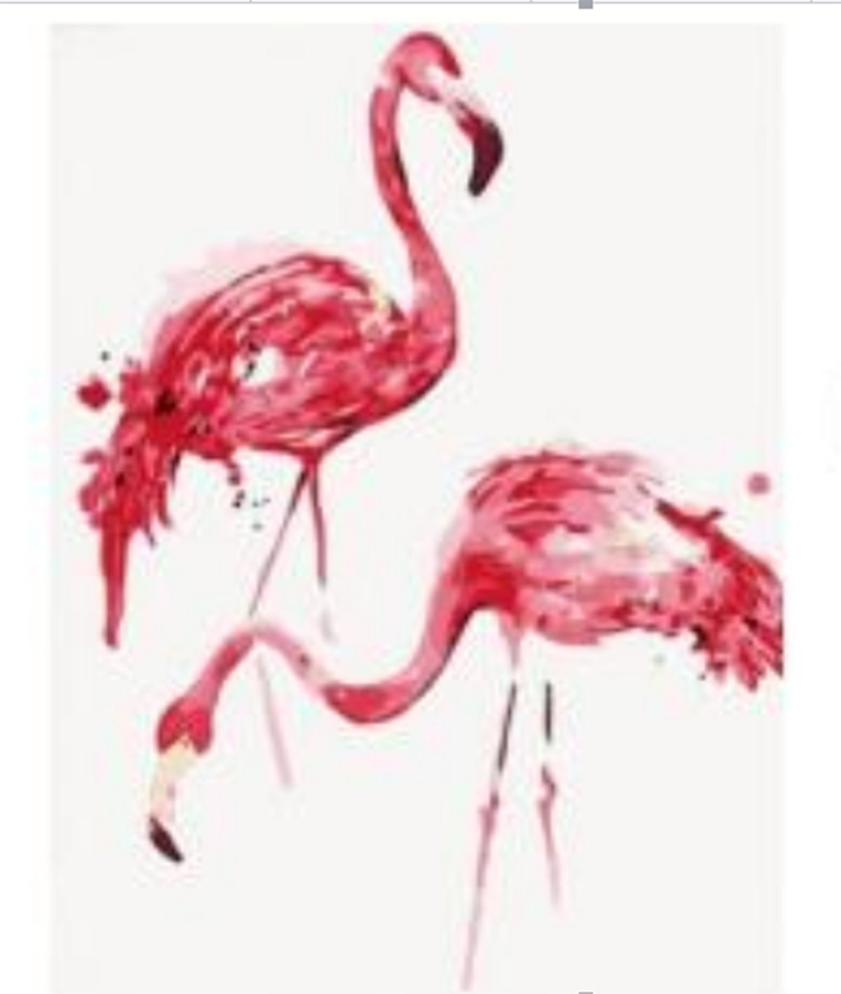Shukqueen Diy Oil Painting, Adult's Paint by Number Kits, Acrylic Painting Flamingos 16X20 Inch (Frameless)