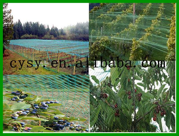 Extra Cover Net For Nylon Anti Bird Nettting Fruit Tree Netting Protection