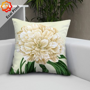2018 latest design peach skin Cushion Cover for decoration with high quality
