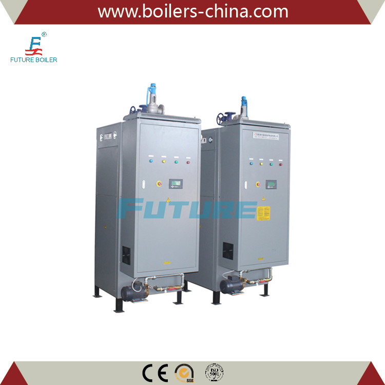 Trade Assurance First Class Electric Steam Boiler