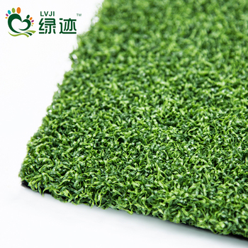 Outdoor Carpet Mini Golf Artificial Plastic Gr