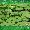 Natural Top Quality Herbal Ingredient Actaea Racemosa Extract Black Cohosh Extract Powder