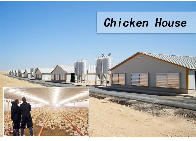 Poultry Farming Project Cost Plan in Hindi