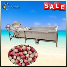 Hot sale commercial fruit and vegetable washing machine