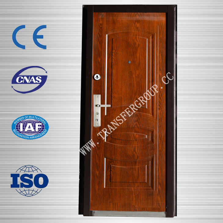 steel door MDF russian from china providers TR-S910-2