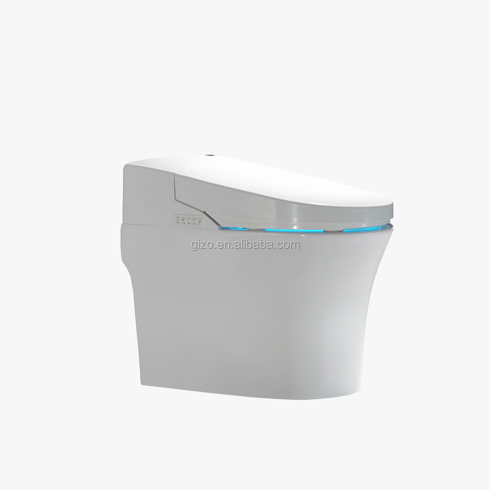 Heated Water Wash Electronic Automatic Smart Toilet