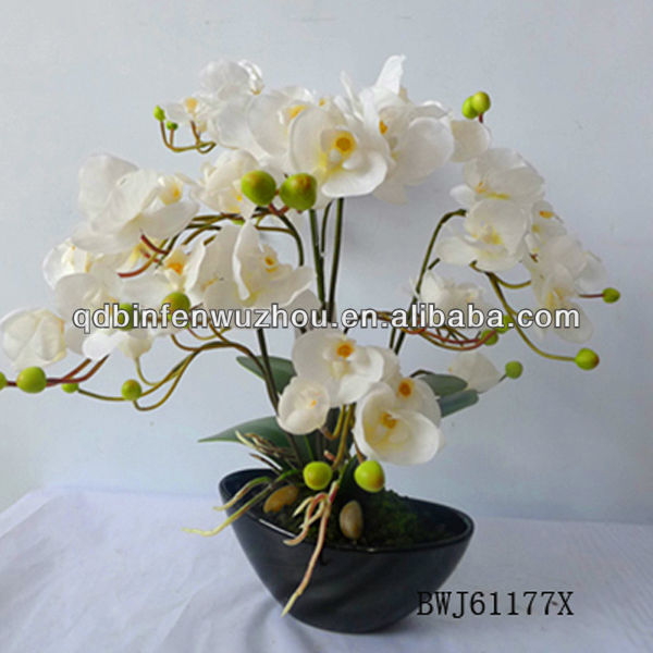 Orchid Flower Pot Supplieranufacturers At Alibaba