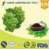 Low Price OPC / grape seed extract for antioxidant & antifatigue.