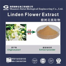 Linden, Linden flower, 100% natural Linden flower extract powder