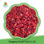 Best Iqf Wild Lingonberry SGS