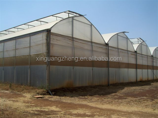 prefabricated metal steel agricultural greenhouse sale