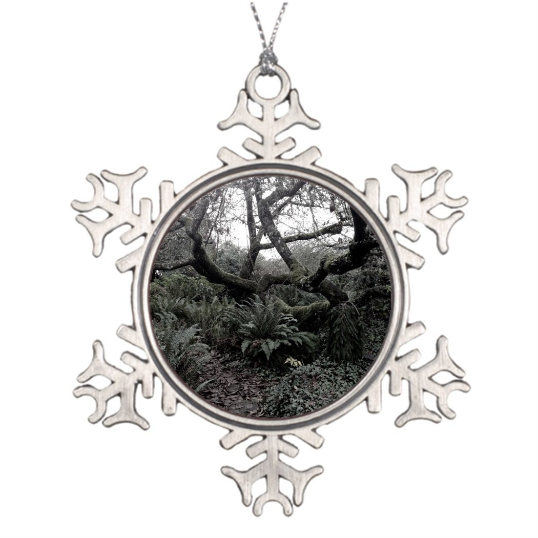Sedlockyvq Xmas Trees Decorated Mossy Twisty Tree Pictures Of Snowflake Ornaments