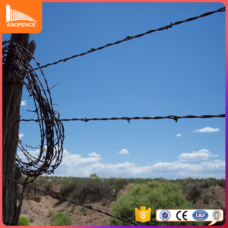 Razor Barbed Wire Gi, Razor Barbed Wire Gi Suppliers and ...