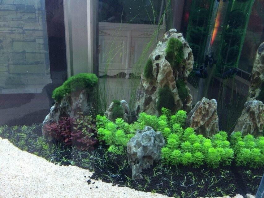 China Manufacturer Aquarium Fish Tank Decoration Stone