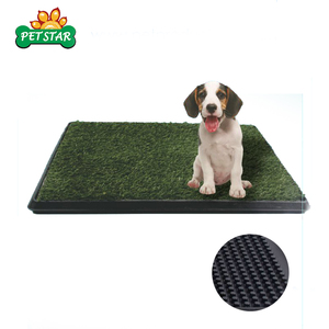 Indoor Eco-Friendly Dog Toilet for Male Dog