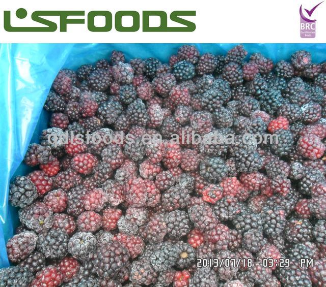 IQF frozen blackberry grade B price