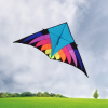 Cheap custom funny outdoor easy flying delta kite