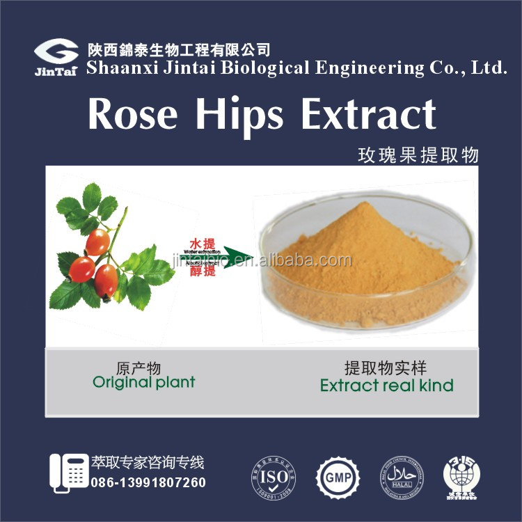 factory supply extract/grinding rose leaf powder