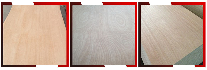 linyi brown film poplar core film faced plywood