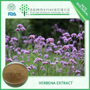 Factory wholesale Lemon Verbena Extract in 20:1 Verbena officinalis glycosides