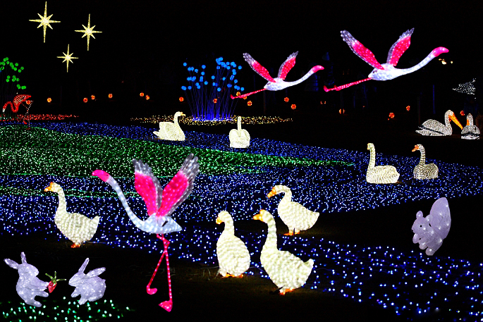 Rifornimenti del partito led acrilico illuminato flamingo 3d ha condotto la luce animale decorazioni
