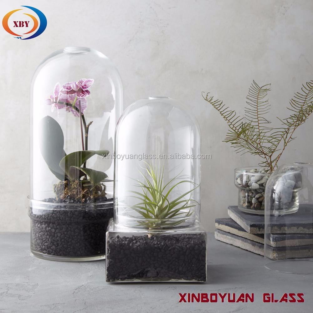 Gl Cloche Bell Jar Plant Terrarium