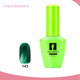 USA Factory Organic Nail Art Magic Fingernail Polish Soak Off UV Color Gel