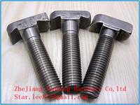Stainless steel T bolt/bolt and nut