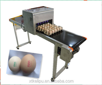 2017 Fast Speed Industrial egg Inkjet Printer / High quality Egg Date Printing with low cost