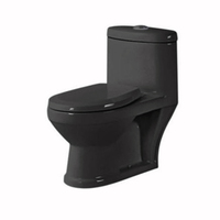 Chinese colorful ceramic wc black mini toilet for child