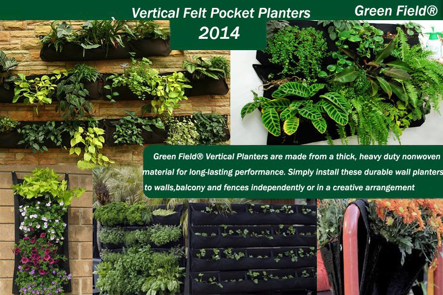Verticale Tuin Woonkamer : Groene veld verticale tuin flora voelde woonkamer muur planter