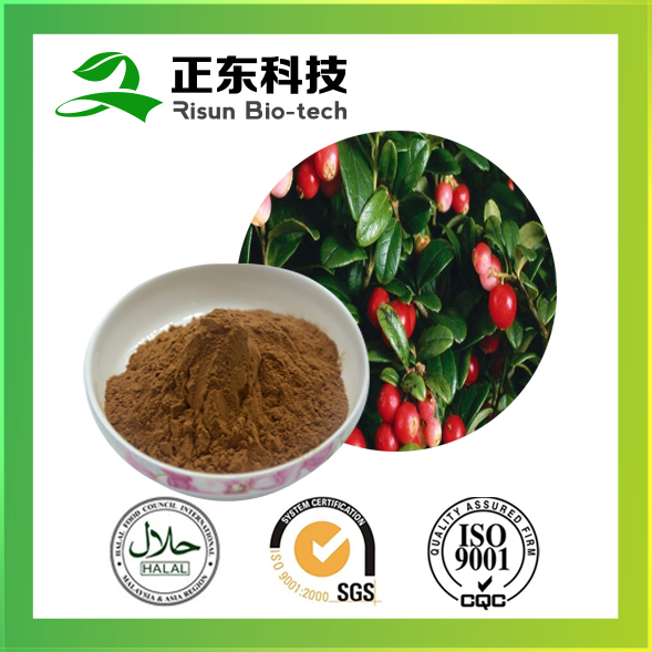 Natural Plant Extract ratio powder 10:1 Rose Hip Extract