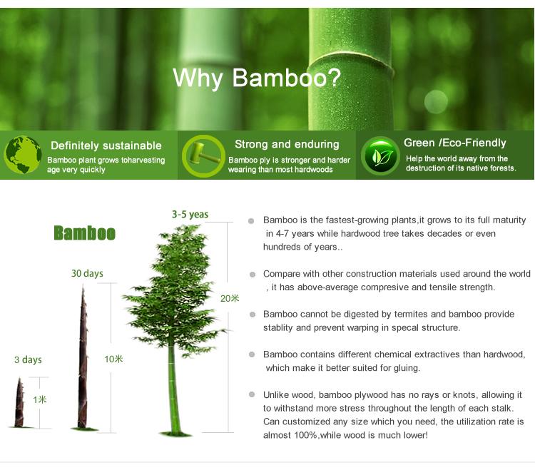 why bamboo veneer