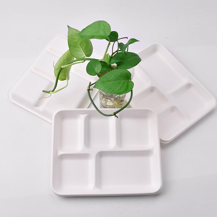 Il campione libero eco friendly compostabili bagassa di canna da zucchero in fibra di bambù usa e getta biodegradabili 5 vano pranzo vassoi
