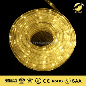 2700K led christmas rope light round 2 wire 3 wire low voltage 24v