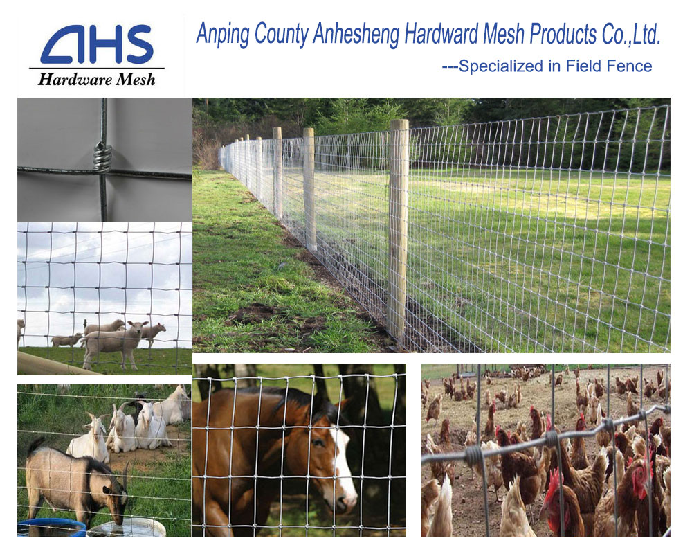 Pourty Equipment Galvanized Farm Fence/field Fence/animals Lowes Hog ...